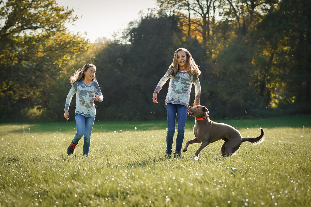 two girls, one dog, in beautyful octobre sun, outdoor, grass