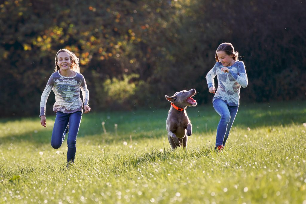 two girls and her dog running on the grass, sunshine, autumn colors