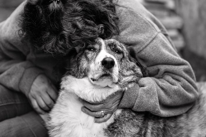 Woman and dog, love, black and white, Andrea Schenke Photography, Wittlich, Fotograf